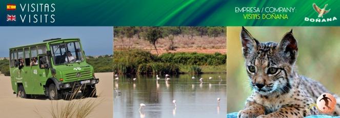 02.Visitas Doñana